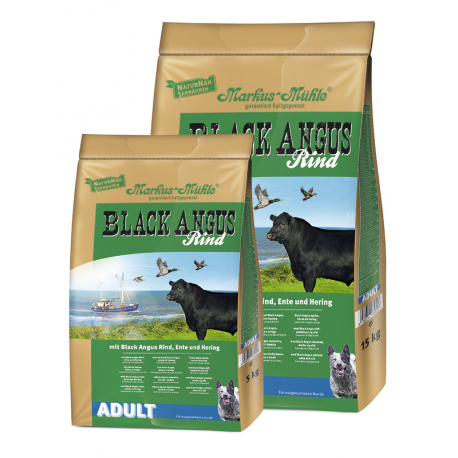 BLACK ANGUS ADULTO